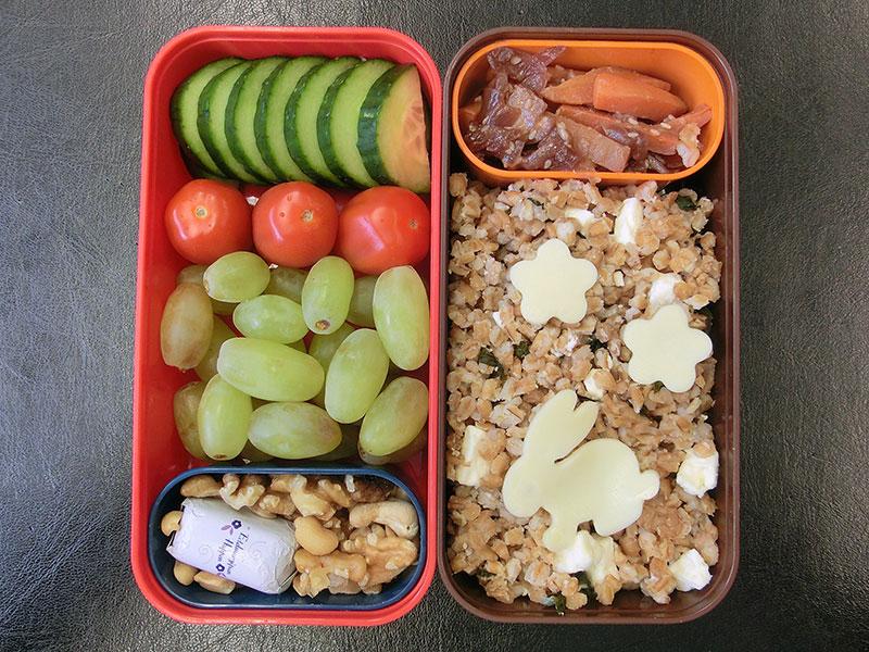 Bento Box gefüllt mit Hirsepfanne, Karotten, Gurke, Tomate, Weintrauben, Nüsse