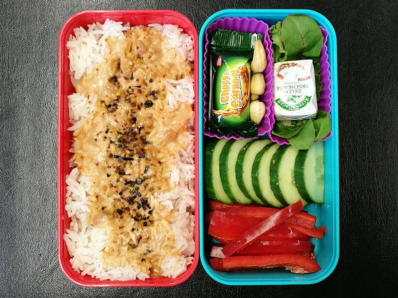 Bento Box gefüllt mit Reis, Schokolade, Nüsse, Frischkäse, Gurke, Paprika